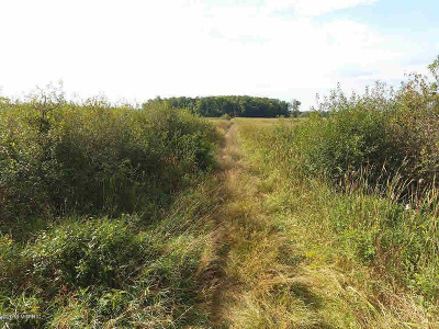 Jackson MI Residential Lots & Land For Sale: $198,500