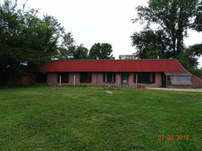 Hudson MI Single Family Home For Sale: $259,900