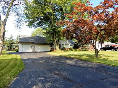 Livonia Single Family Home For Sale: 17251 Mayfield St