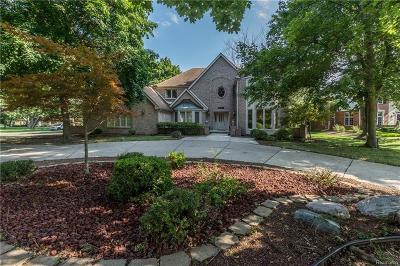 Farmington Hill Single Family Home For Sale: 34015 Lyncroft St