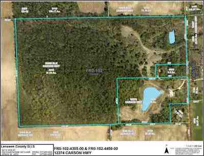 Clinton MI Residential Lots & Land For Sale: $320,000