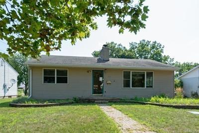Lansing Single Family Home For Sale: 3515 Palmer St