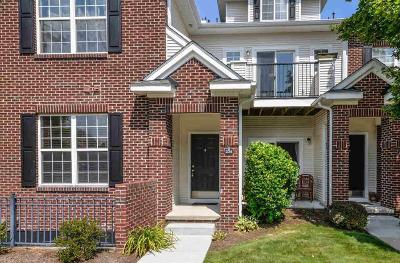 Ann Arbor Condo/Townhouse Contingent - Financing: 273 Scio Village Ct