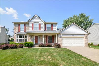 Washtenaw County Single Family Home For Sale: 5937 Cottonwood Dr