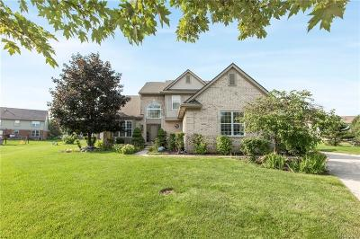 Canton Single Family Home For Sale: 46550 Scotia Crt