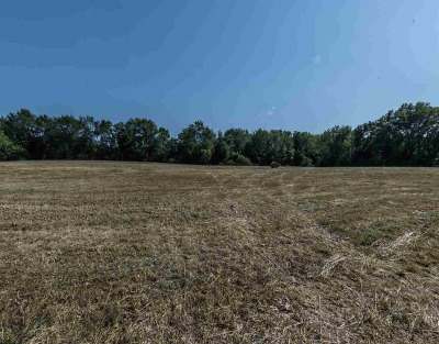 Ann Arbor MI Residential Lots & Land For Sale: $1,050,000