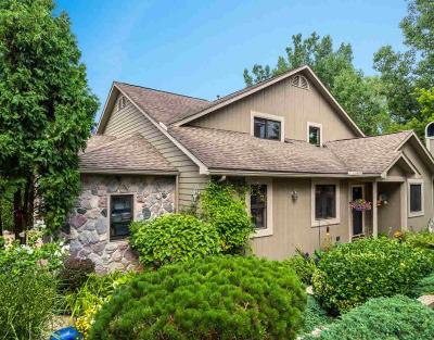 Ann Arbor Condo/Townhouse For Sale: 482 Village Oaks Ct