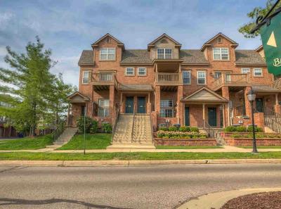 Ann Arbor Condo/Townhouse For Sale: 2751 Barclay Way