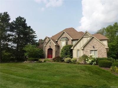 Farmington Hill Single Family Home For Sale: 30457 Fox Club Dr