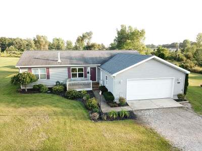 Munith Single Family Home For Sale: 10481 Territorial Road