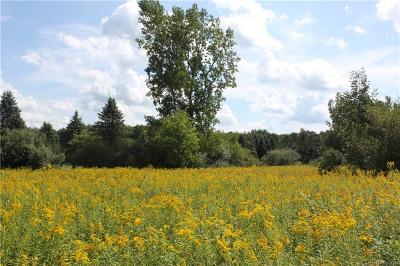 Residential Lots & Land For Sale: Cherrydale