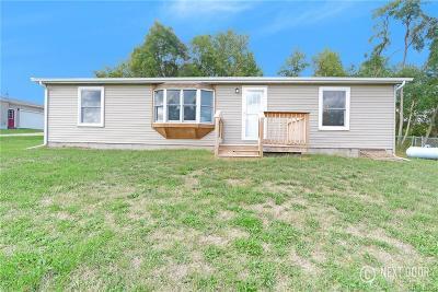 Grass Lake Single Family Home For Sale: 8462 Ann Arbor Rd