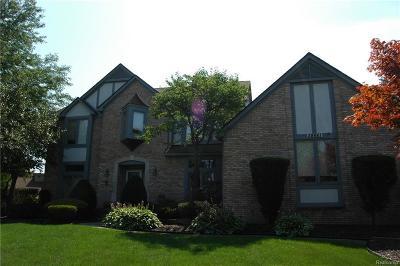 Farmington Hill Single Family Home For Sale: 38661 Mystic Crt