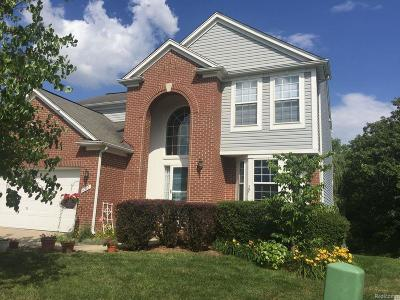 Washtenaw County Single Family Home For Sale: 6307 Creekside Cir