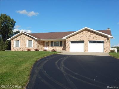 Belleville Single Family Home For Sale: 16707 Elwell Road