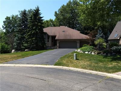 Single Family Home For Sale: 4278 Forest Valley Crt