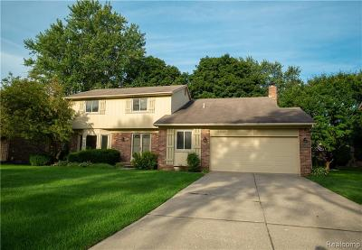 West Bloomfield Single Family Home For Sale: 2218 Kolomyia St