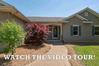 Washtenaw County Single Family Home For Sale: 7550 Ellens Way St