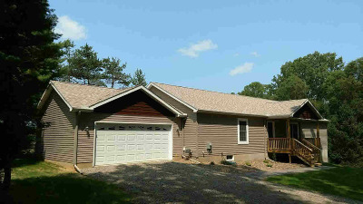Grass Lake MI Single Family Home For Sale: $544,900