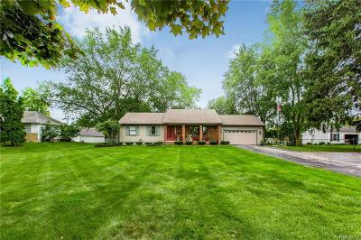 Plymouth Single Family Home For Sale: 40673 Five Mile Rd