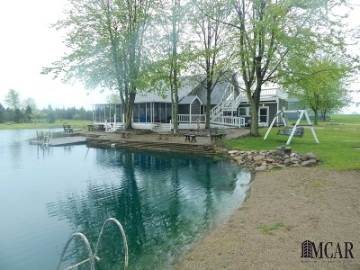 Hudson MI Single Family Home For Sale: $339,900