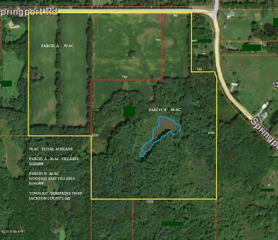 Parma MI Residential Lots & Land For Sale: $149,000