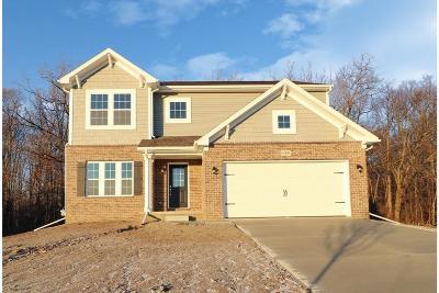 Belleville Single Family Home For Sale: 13491 Cambridge Crt