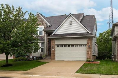Novi Single Family Home For Sale: 27617 Belgrave Plc
