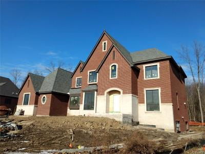 Northville Single Family Home For Sale: 49026 Veneto Dr