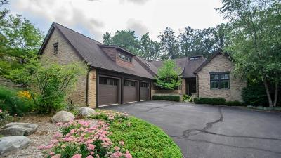 Ann Arbor Single Family Home For Sale: 4140 High Ridge Rd