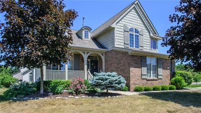 Washtenaw County Single Family Home For Sale: 6167 Gabrielle Ave
