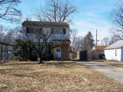 Single Family Home For Sale: 21779 Negaunee St