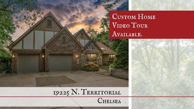 Chelsea Single Family Home For Sale: 19225 N Territorial Rd