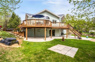 Stockbridge Single Family Home For Sale: 5329 S M-52