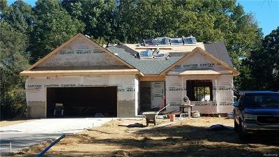 Livonia Single Family Home For Sale: 20220 Parkville