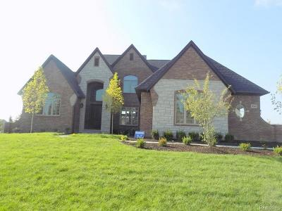 South Lyon Single Family Home For Sale: 10547 Stoney Point Dr