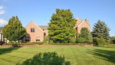 Ann Arbor Single Family Home For Sale: 5289 N Prairie Dunes Ct