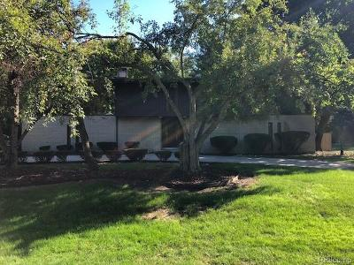 Southfield Single Family Home For Sale: 19555 Saxton Rd