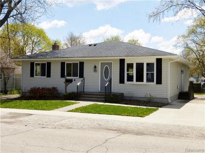 Lake Orion Single Family Home For Sale: 422 E Jackson St