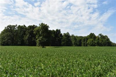 Residential Lots & Land For Sale: Farnsworth Rd