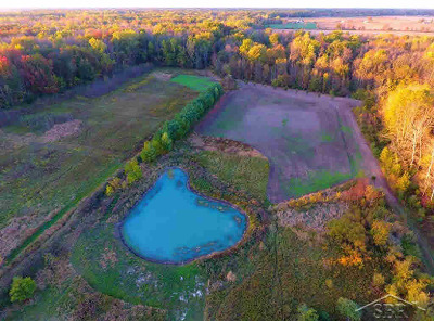 Residential Lots & Land For Sale: 2787 E Mier Rd