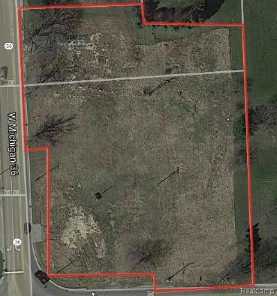 Residential Lots & Land For Sale: 7609 E M-36