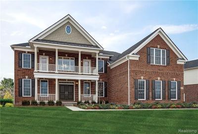 Canton Single Family Home For Sale: 50537 Silverton Dr