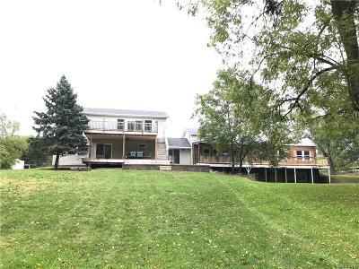 Dexter Single Family Home For Sale: 8595 Huron River Crt