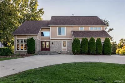 West Bloomfield Single Family Home For Sale: 7249 Oakwood Dr