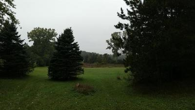 Chelsea MI Residential Lots & Land For Sale: $160,000