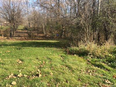 Salem MI Residential Lots & Land For Sale: $235,000