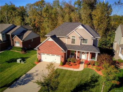 South Lyon Single Family Home For Sale: 53572 Valleywood Dr