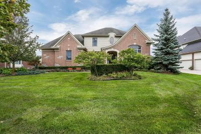 Northville Single Family Home Contingent - Financing: 47069 Merion Cir