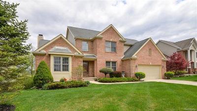 Ann Arbor Single Family Home For Sale: 1041 Bicentennial Pkwy